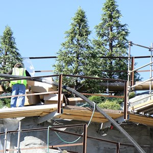 6 of 11: Fantasyland - Seven Dwarfs Mine Train coaster construction - trees arrive