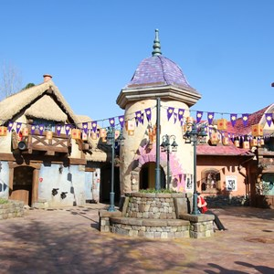 21 of 32: Fantasyland - Tangled restroom area opening day