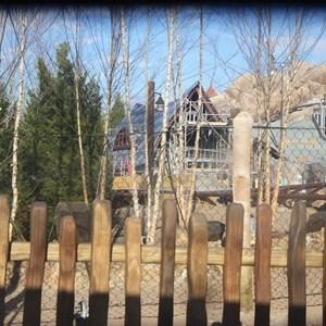 12 of 22: Fantasyland - Seven Dwarfs Mine Train coaster construction