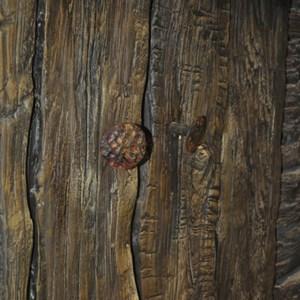 3 of 10: Fantasyland - Seven Dwarfs Mine Train theming sneak peek