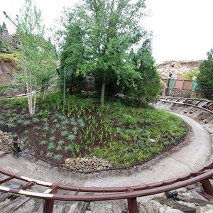 1 of 13: Fantasyland - Seven Dwarfs Mine Train coaster more walls down