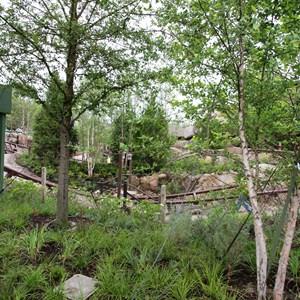 6 of 13: Fantasyland - Seven Dwarfs Mine Train coaster more walls down