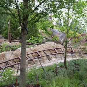 7 of 13: Fantasyland - Seven Dwarfs Mine Train coaster more walls down