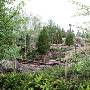 8 of 13: Fantasyland - Seven Dwarfs Mine Train coaster more walls down