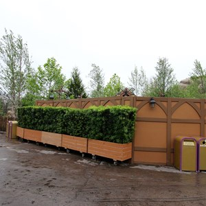 9 of 13: Fantasyland - Seven Dwarfs Mine Train coaster more walls down