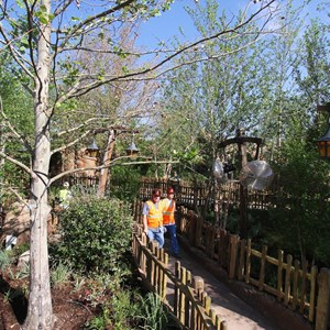 8 of 19: Fantasyland - Walls down around queue at Seven Dwarfs Mine Train coaster