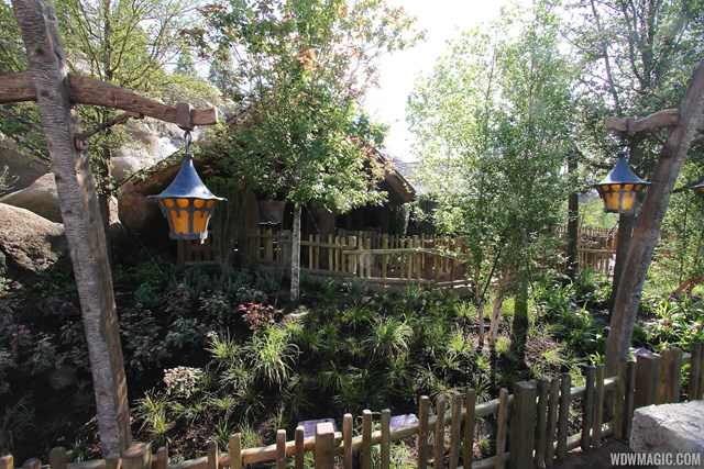 Seven Dwarfs Mine Train outdoor queue