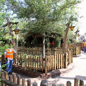 13 of 19: Fantasyland - Walls down around queue at Seven Dwarfs Mine Train coaster