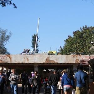 3 of 5: Festival of the Lion King - Festival of the Lion King construction in Africa