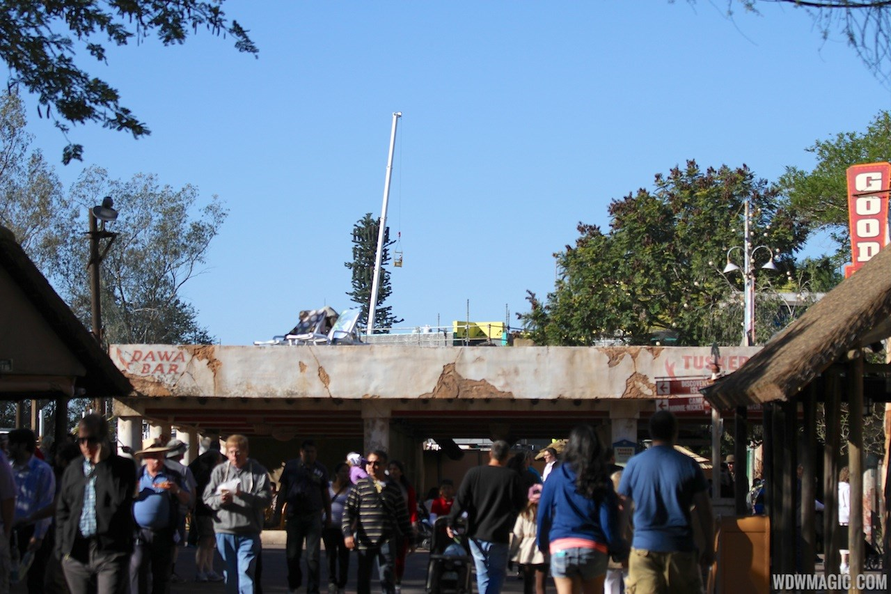 Festival of the Lion King construction in Africa