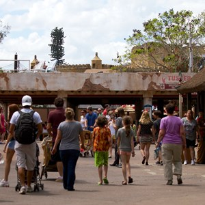 3 of 9: Festival of the Lion King - Festival of the Lion King construction in Africa