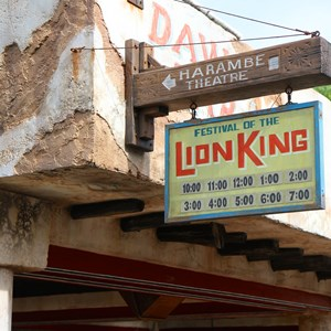 3 of 40: Festival of the Lion King - New Harambe Theatre area in Africa - Show times signage