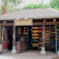 Festival of the Lion King - New Harambe Theatre area in Africa - Mariya's Souvenirs merchandise kiosk