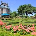 France (Pavilion) - Plume et Palette - perfume shop