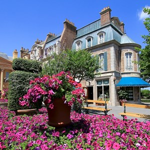 10 of 22: France (Pavilion) - Flowers in full bloom in front of Impressions de France