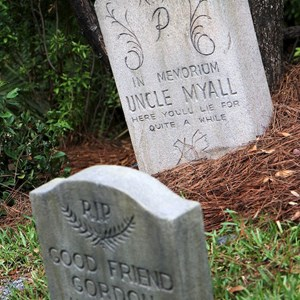 15 of 22: Haunted Mansion - Good Friend Gordon and Uncle Myall