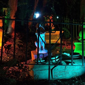 12 of 37: Haunted Mansion - Disney Parks Blog Trick or Meet-Up