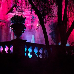 17 of 37: Haunted Mansion - Disney Parks Blog Trick or Meet-Up