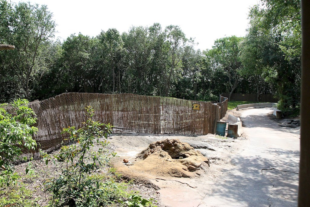 Zebra area construction