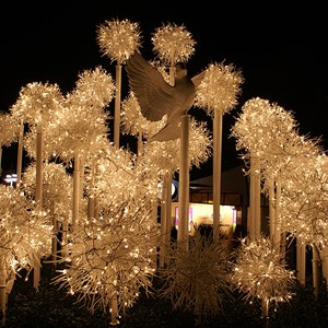 1 of 6: Lights of Winter - Lights of Winter display 2007