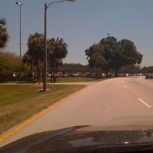 4 of 5: Magic Kingdom - Cars parking on the grass at the TTC heading to the Magic Kingdom.