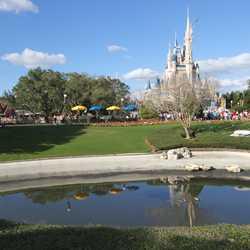 Magic Kingdom moats drained