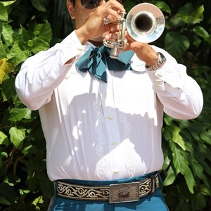 1 of 8: Mariachi Cobre - Outside performance