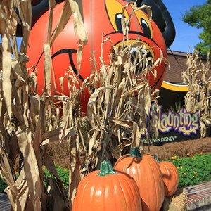 3 of 10: Marketplace - Downtown Disney halloween decorations