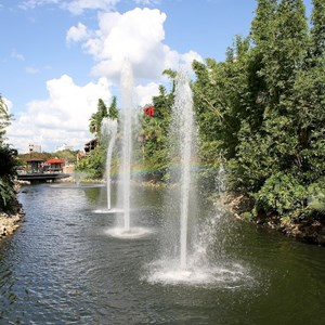 1 of 2: Marketplace - The new fountains near Raglan Road