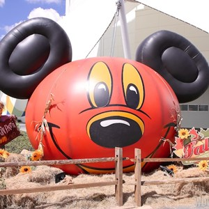 2 of 6: Marketplace - Downtown Disney Fall decor 2013 - Giant Mickey pumpkin on the West Side