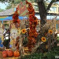 Marketplace - Downtown Disney Fall decor 2013 - Marketplace photo op
