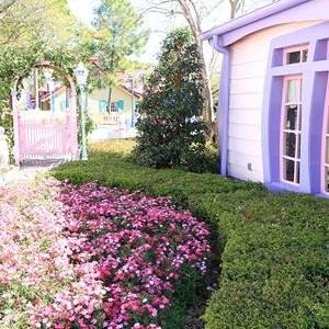 5 of 6: Minnie's Country House - Minnie's Country House - exterior