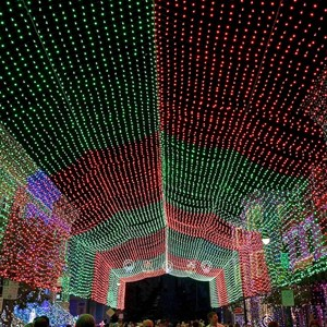 5 of 5: Osborne Family Spectacle of Dancing Lights - 2011 Display