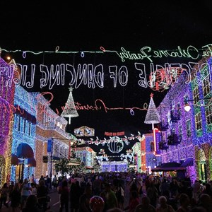 4 of 5: Osborne Family Spectacle of Dancing Lights - 2011 Display