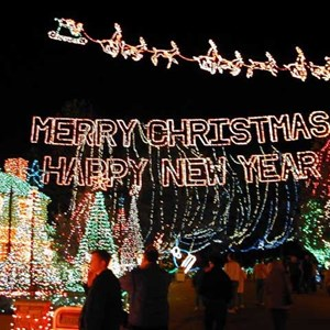 9 of 15: Osborne Family Spectacle of Dancing Lights - Osborne Family Spectacle of Lights display on Residential Street
