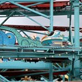 Primeval Whirl