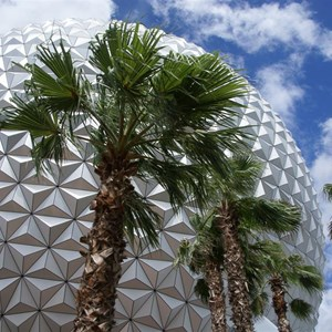 10 of 16: Spaceship Earth - Walkway reopens