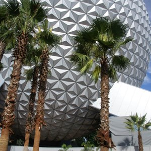 4 of 10: Spaceship Earth - New landscaping