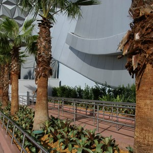 7 of 10: Spaceship Earth - New landscaping