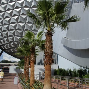 8 of 10: Spaceship Earth - New landscaping