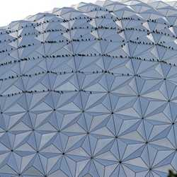 Birds invade Spaceship Earth