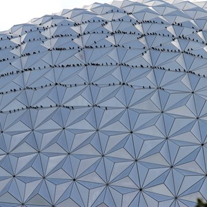2 of 3: Spaceship Earth - Getting closer...certainly something unusual going on