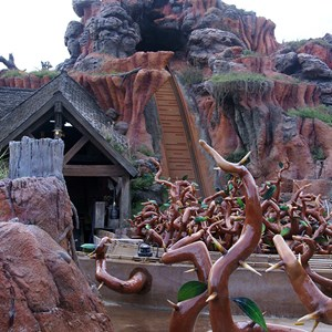 3 of 7: Splash Mountain - Splash Mountain drained for refurbishment