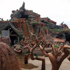 7 of 7: Splash Mountain - Splash Mountain drained for refurbishment