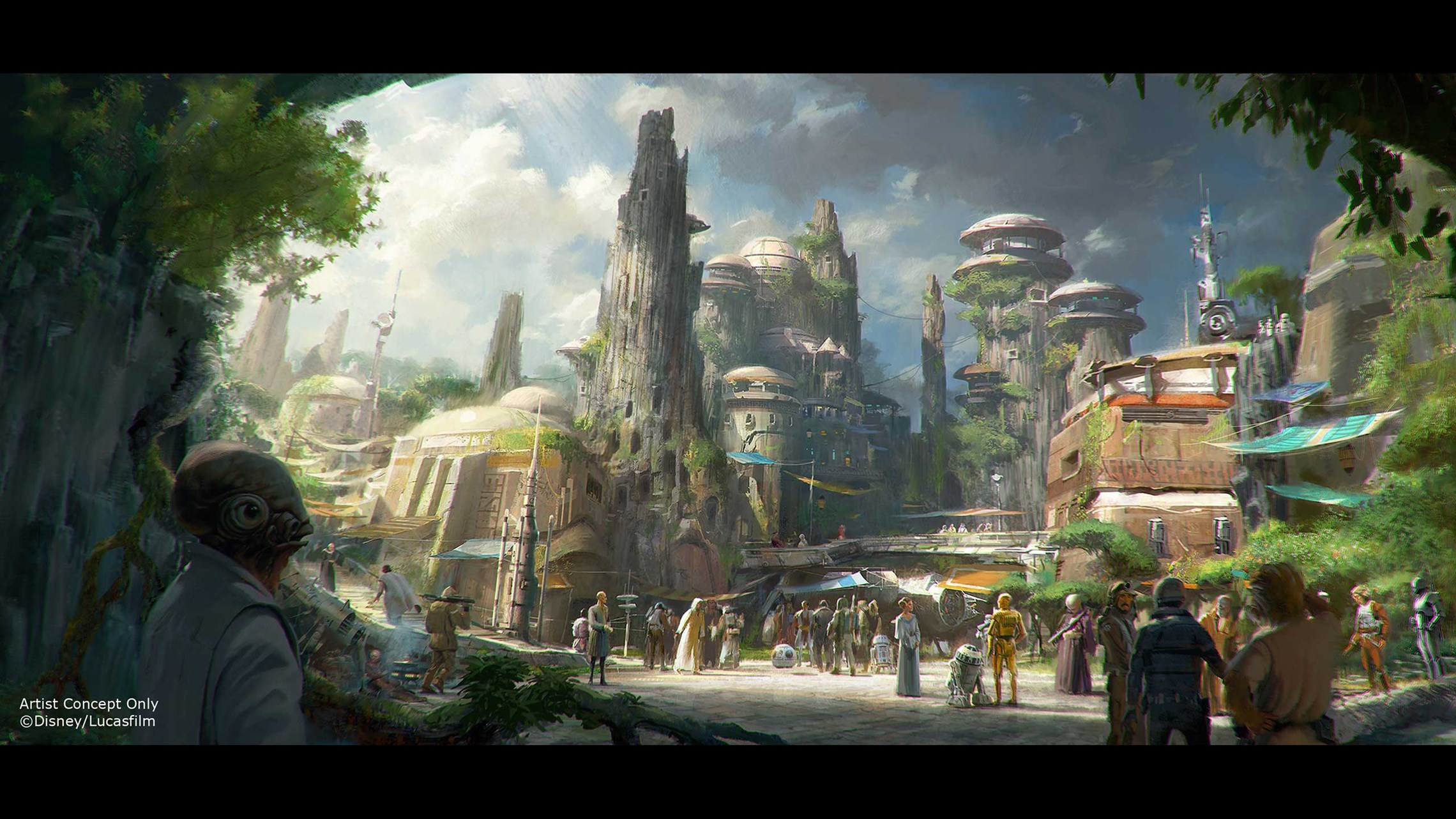 Star Wars Land - Disney