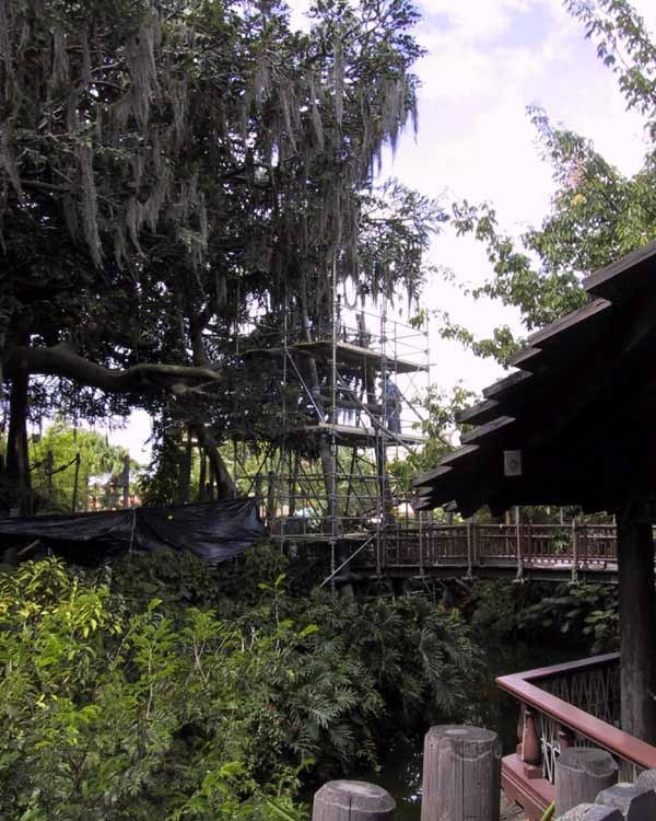 Swiss Family Treehouse refurbishment
