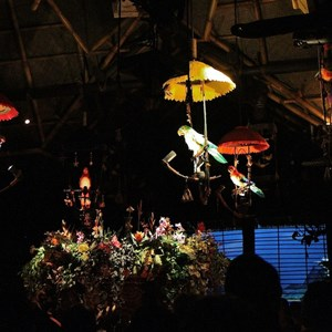 19 of 38: Walt Disney's Enchanted Tiki Room - Opening Day