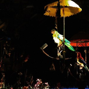 23 of 38: Walt Disney's Enchanted Tiki Room - Opening Day