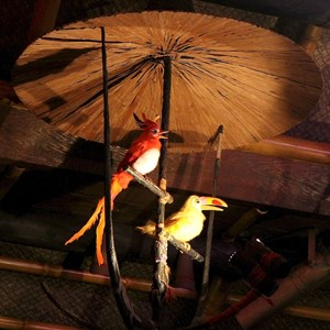 30 of 38: Walt Disney's Enchanted Tiki Room - Opening Day