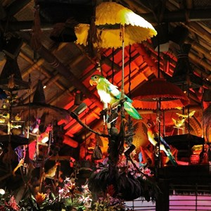 31 of 38: Walt Disney's Enchanted Tiki Room - Opening Day